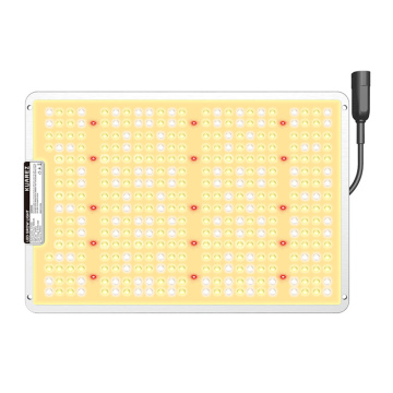 100w Zimmerpflanze LED Grow Light