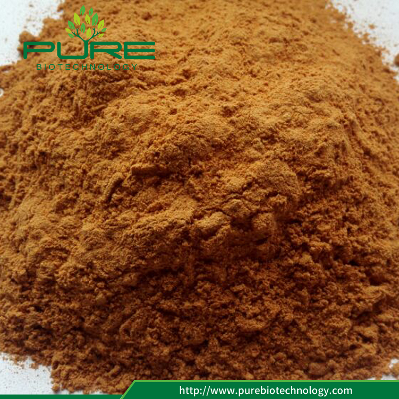 Freeze Dried Goji Berry Powder