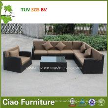 Gray and Black Livingroom Sofa in Home Garden Furnitures (CF1025)
