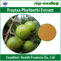 Extracto de Fructus phyllanthi 100% natural