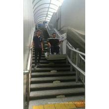 Suministro de China elevador de silla de ruedas inclinado / elevador de pacientes para discapacitados / elevadores de escaleras