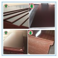 Black/Brown Film Faced Construction Plywood for building