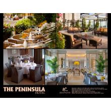 ATC PROJECT - THE PENINSULA HOTEL