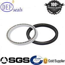 Spring Energized Seals Made by PTFE OEM