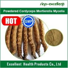 Cordyceps pulverizado Mortierella Mycelia, Cordyceps Extract