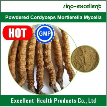 Порошкообразный кордицепс Mortierella Mycelia, экстракт кордицепса