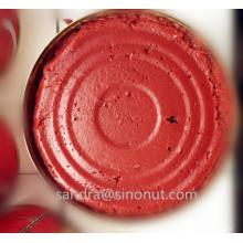 2015crop 210g Tomatenpaste