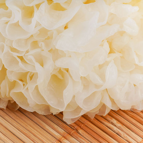 High quality nutrition Tremella hot selling of selling