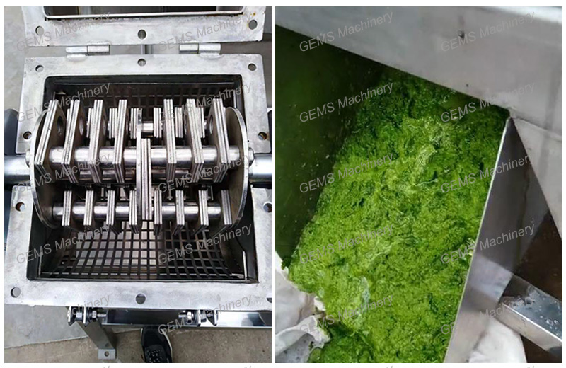 Fruit Vegetable Crusher 2