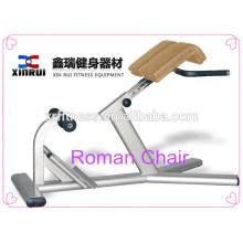 Cadeira romana de alta qualidade da máquina livre do peso do equipamento interno do Gym