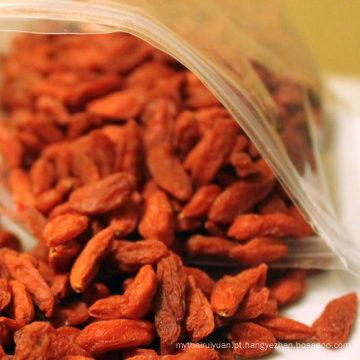 Preço de fornecedor profissional seco orgânico goji berry