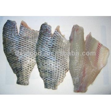 Frozen Tilapia Fillet (oreochromis spp) sur le poisson