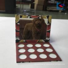 cartão vazio luxuoso da paleta da sombra para os olhos com espelho
