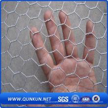 Hot Sales PVC Revestido Hexagonal Wire Mesh