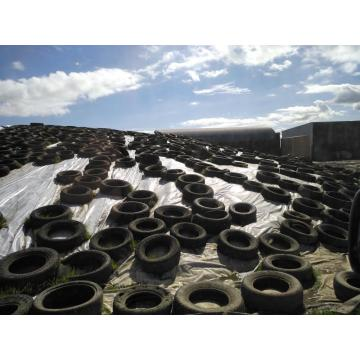 Silage Cover- Extrusion Blown Tipo de moldagem