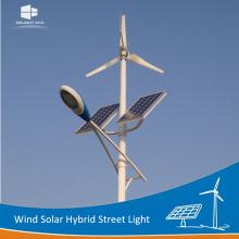 DELIGHT DE-WS01 Горизонтальный ветер Солнечная энергия Уличный свет