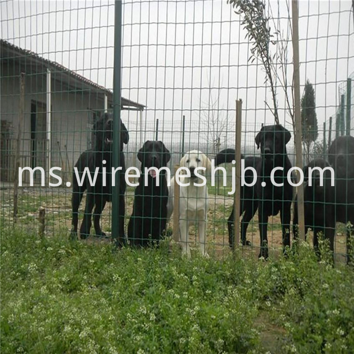 PVC Coated Welded Wire Mesh Fencing