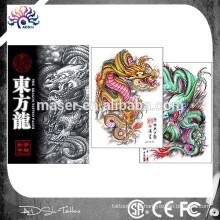 Orient dragão imagem tatuagem livro fantástico costume tatuagem esboço livro