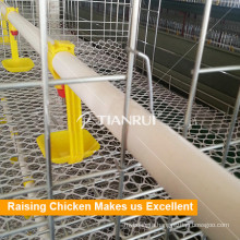 Poultry Chicken Waterer Feeders and Drinkers for Nigeria Chickens