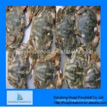 IQF congelé nouveau yummy crabe de boue avec fournisseur de gros
