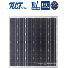 Nice Design 90W Mono Solar Solels in Bottom Price