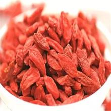 Berühmte Frucht der Sepical China-Gesundheit Lebensmittel goji Frucht im Porzellan