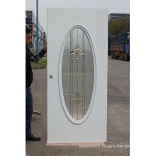 Fog Glass Steel Door