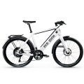 Intelligent power Lithium electric bicycle