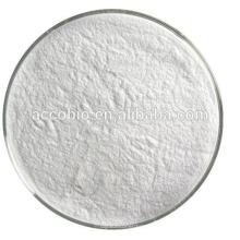 Ingredientes alimentarios Aditivo alimentario Natamicina