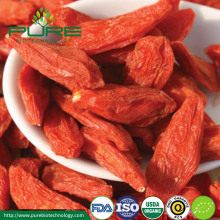 Pure and Organic Natural Dried Goji berry/Dried