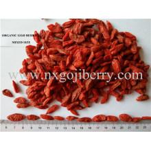 Ningxia Organic Goji Berry (Baixo SO2)