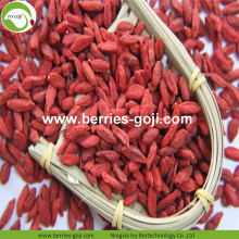 Factory Supply Frukter Sunt Variety Goji Berry