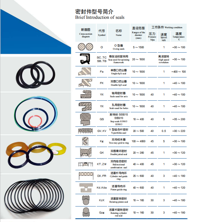 Oil Seal Hebei Baoshi
