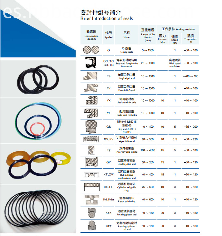Common Oil Seal