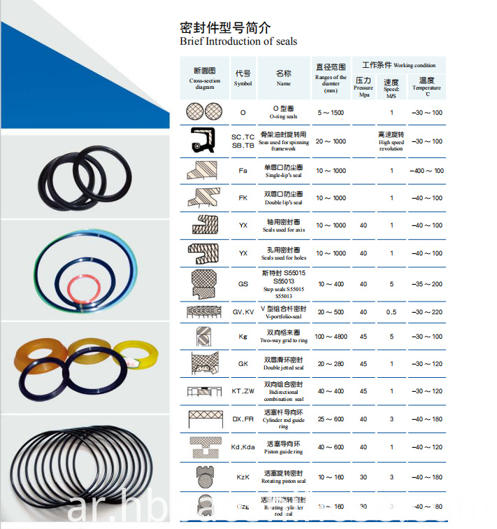 Common Mechanical Seal