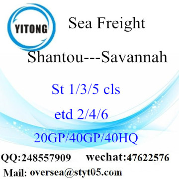 Shantou Port Sea Freight Shipping To Savannah