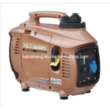 2.5kW Wechselrichter Generator - Tiger-Hersteller