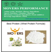 Bestseller Bodybuilding-Protein-Molkeprotein-Formel