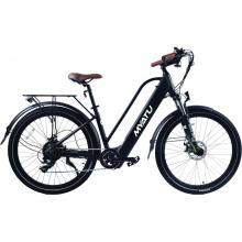 Leisure Electric Beach Bike