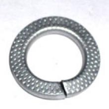 Spring Lock Washer (BN208012)