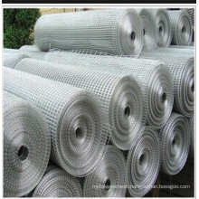 Galvanized Welded Wire Mesh Anping Manufactor (ISO)