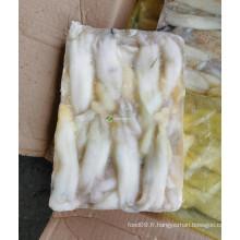 1 kg par bloc d'oeufs de seiche llex de bonne qualité 200-300g