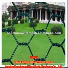 High quality green pvc coated hexagonal wire netting with preferential price in store
