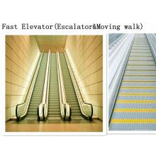 Supermarché Moving Walks Escalier