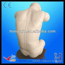 Modèle de mannequin maniable, ponction thoracique et lombaire ISO Advanced Advanced Puncture Formations