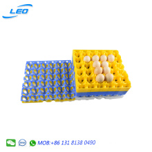 best quality chicken egg tray PP plastic egg tray for 30 chicken eggs