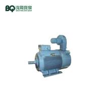 YZPE2-200L1-4 30KW Hoisting Motor for Tower Crane