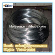 chicken coop iron wire fence / BWG22 vrey cheap galvanized iron wire