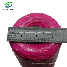 Pink High Tenacity PE/PP/Polyester/Nylon Plastic Twisted/Braided/Baler/Thread/Packing Line/Fishing Net Twine (210D/380D)