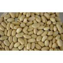 High Quality for Blanched Peanut